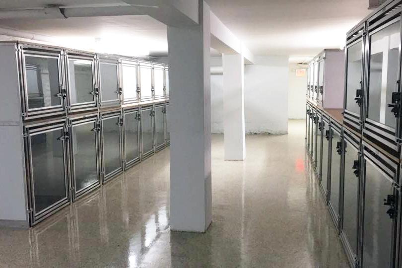 training facility kennel area